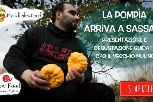 A Sassari, una serata dedicata a sa pompìa di Siniscola